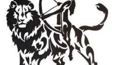 Астрологічна сумісність лева і стрільця: битва темпераментів або красива любов?