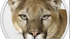 Близнюки і леви - яскравий союз!