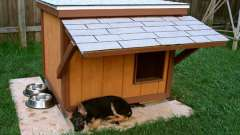 Будка для німецької вівчарки: розміри, схема, інструкція будівництва