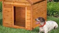 Будка для собаки: правила побудови, розрахунок розмірів і необхідні матеріали