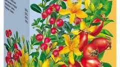 Цілюща сила трав для здоров`я організму: «бруснівер» - відгуки пацієнтів