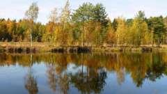 Чорне озеро (зеленоград): плануємо літній відпочинок