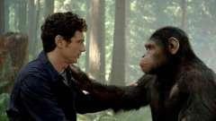 Що властиво і людині, і тварині: подібності та відмінності