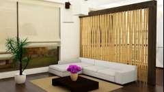 Декоративні перегородки в інтер`єрі кімнат