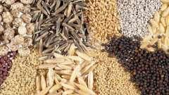 Дікорослі и культурні рослини світу: різноманітність, использование людиною