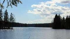 Довге озеро, ленінградська область: опис, відпочинок, рибалка