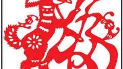 Дракон і собака: сумісність за східним гороскопом і перспективи відносин