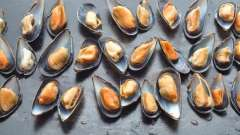 Готуємо мідії: рецепт вишуканих морепродуктів
