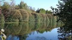 Ізмайловський парк на сході москви