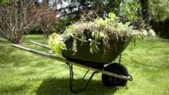 Ефективна боротьба з бур`янами на городі