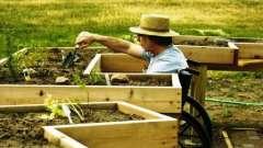 Як правильно зробити грядки на городі. Як робити грядки на городі