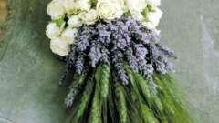 Як зробити композиції з живих квітів своїми руками: кілька прикладів