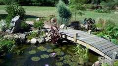 Як створити декоративне водоймище в саду своїми руками