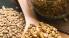 Як вживати пророщену пшеницю правильно