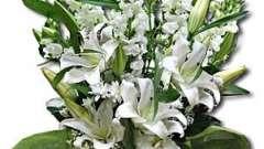 Композиції з квітів