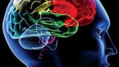 Кт головного мозку: показання та протипоказання