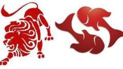 Любовна сумісність: леви і риби