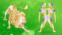 Любовна сумісність чоловіка-близнюка і жінки-лева