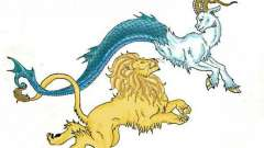 Леви і козероги. Сумісність знаків гороскопу
