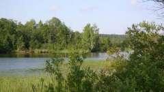 Мічурінському озеро: опис, рибалка, відпочинок