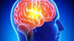 Мнемический процес пам`яті: види, розвиток і характеристики