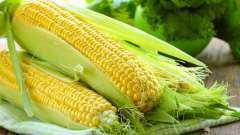 Чи можна їсти кукурудзу сирої? Користь сирої кукурудзи