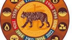 Чоловік тигр-діва: характеристика знака, сумісність в коханні і шлюбі, ділові якості