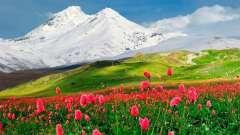 Національні традиції вірменського народу