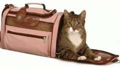 Необхідний атрибут господині пухнастою мугикаючи - перенесення для кішок