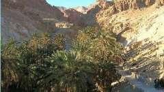 Відпочинок в жовтні в тунісі: відгуки мандрівників