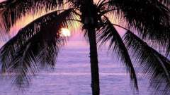 Вирушаємо у відпустку: де в листопаді тепло?