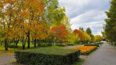 Парк гагаріна (новокузнецк). Режим роботи, атракціони, ціни