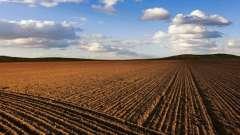 Родючість - що таке? Що таке родючість ґрунту?