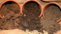 Грунт суглинна: властивості, переваги, недоліки, рослини