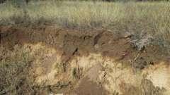 Грунтові горизонти - шари грунтів, що виникають в процесі грунтоутворення