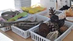 Вироби з природного матеріалу в дитячому саду: цікаво і захоплююче