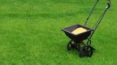 Підготовка газону до зими: поради садівників