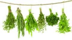 Схуднення на травах - 25 кг на місяць. Трави для схуднення: відгуки, відвари, рецепти