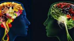 Корисні продукти для мозку і пам`яті