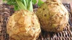 Корисний корінь: селера допоможе очистити організм