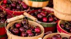 Користь і шкода черешні. Лікувальні властивості річної ягоди