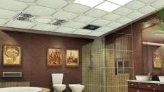 Стелі для ванних кімнат: особливості оформлення інтер`єру