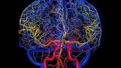 Препарати для судин головного мозку. Препарати, що розширюють судини головного мозку