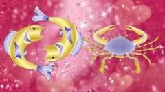 Риби-чоловік + рак-жінка. Сумісність знаків зодіаку
