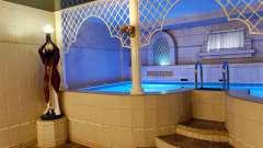 """Сауна """"дельфін"""" (тула): гідне місце для відпочинку и розслабленого"""