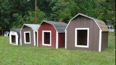 Собачі будки - основи конструкції, фото