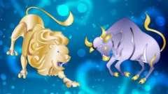 Сумісність чоловіка-лева і жінки-тільця: всі аспекти