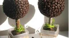 Створимо своїми руками чарівне кавове дерево з зерна