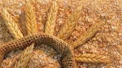 Такі корисні пшеничні висівки
