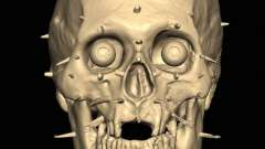 Вчені реконструювали обличчя шотландського короля роберт брюс